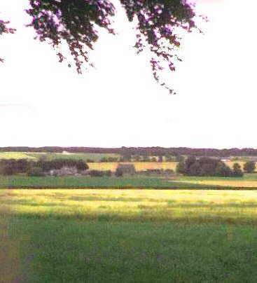Monikie Kirk from a distance.